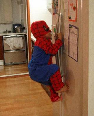 fridge spiderman