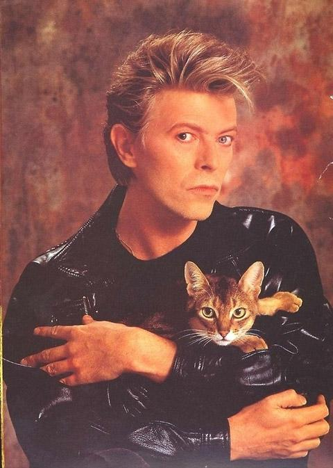 David Bowie and Kitty