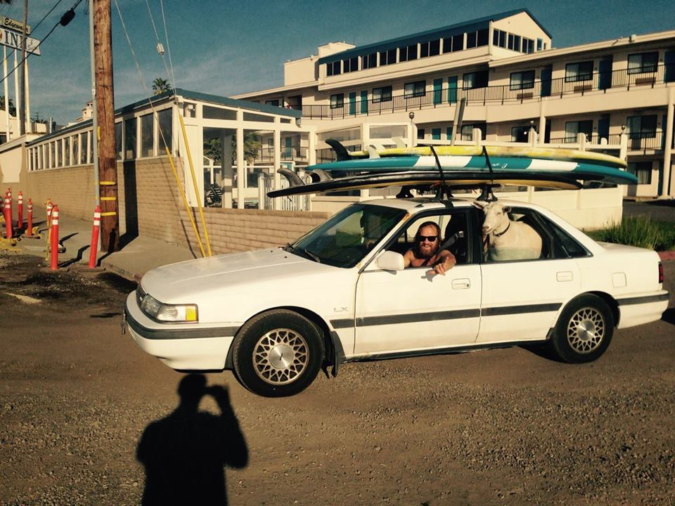 Rad Backseat Surf Goat